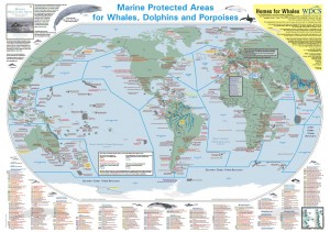 Detailed Map- cetacean marine Protected areas